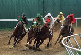 Horse Racing and Betting Systems